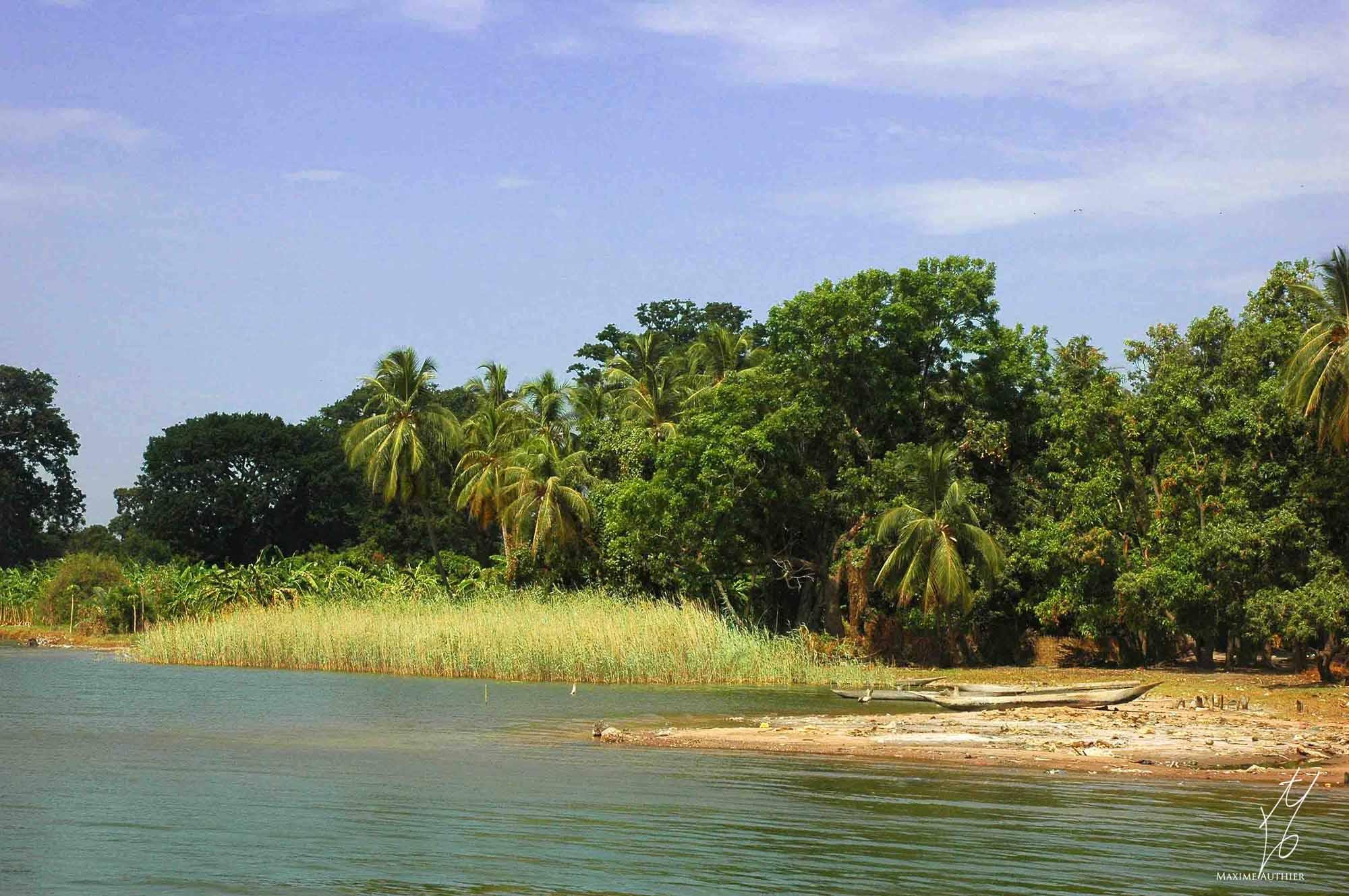 Photo de Maxime Authier de la Casamance, palmeraies, forêts et mangroves du Sénégal